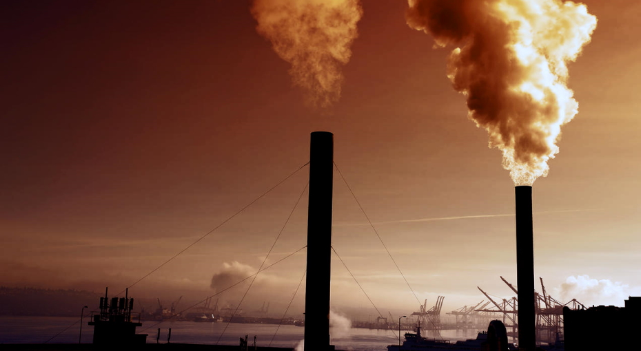 remove CO2 from the atmosphere